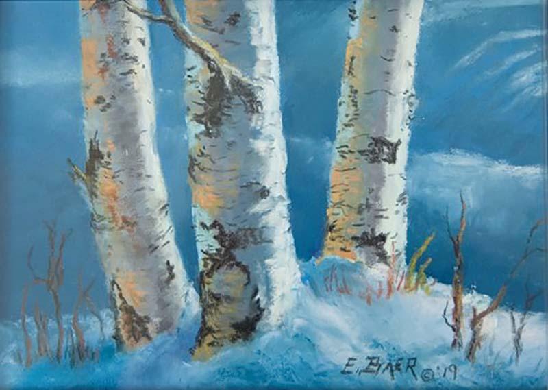 Winter Birch - Elsie Baer
