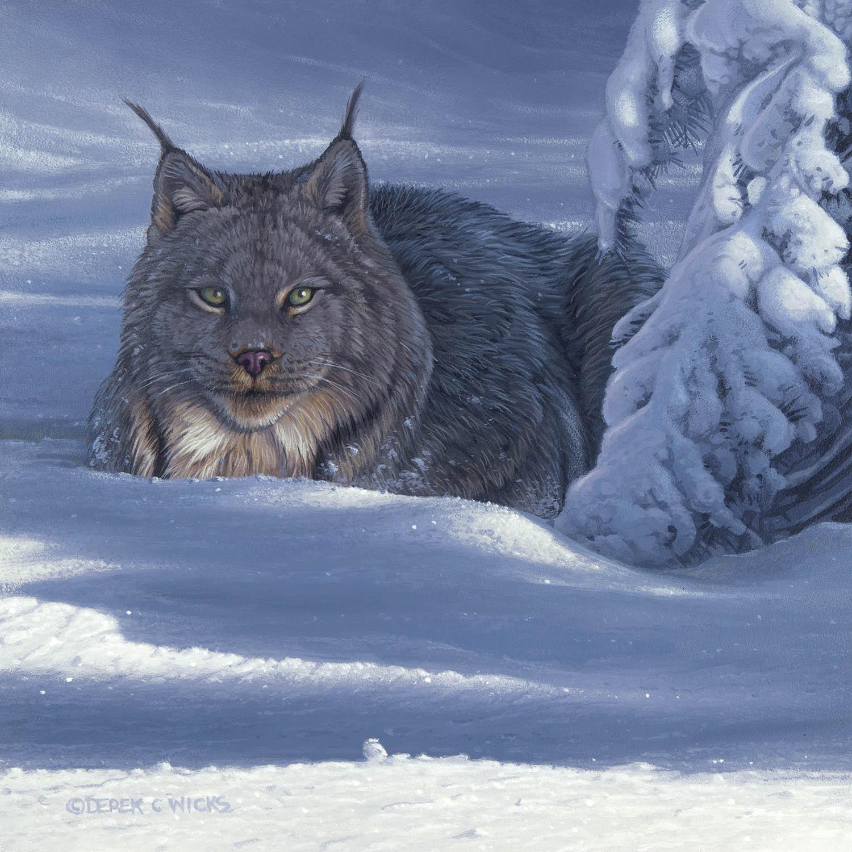 Winter Bundle - Derek Wicks