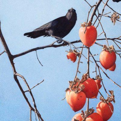 Winter Crow - Barbara Banthien