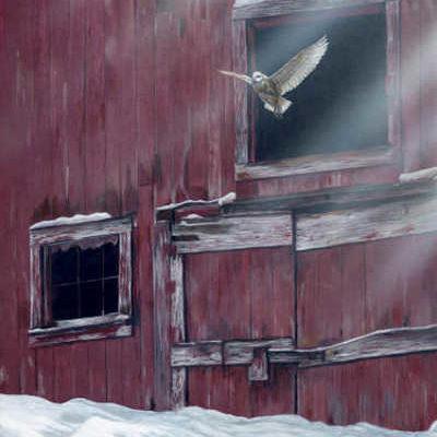 Winter Flight Terry Isaac