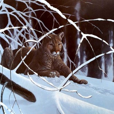 Winter Majesty - Rod Tribiger