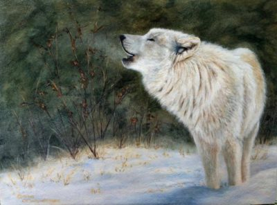 Winter Serenade - Cindy Sorley-Keichinger