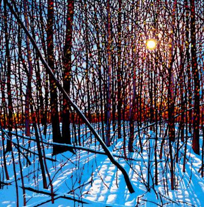 Winter Shine Tim Packer