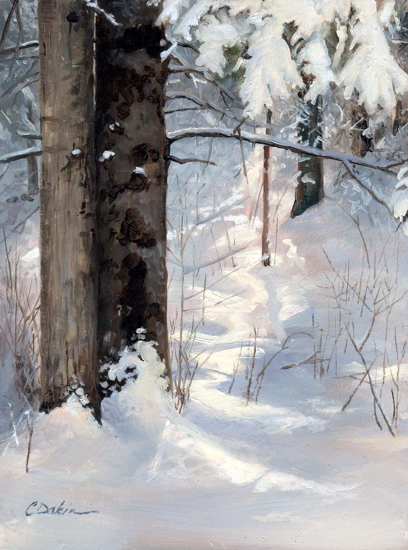 Winter Woods Study II - Charity Dakin