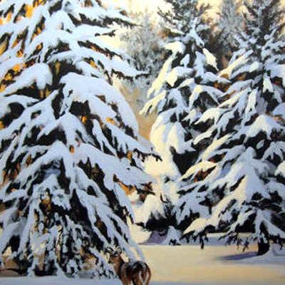 Winter's Wonder Maurade Baynton