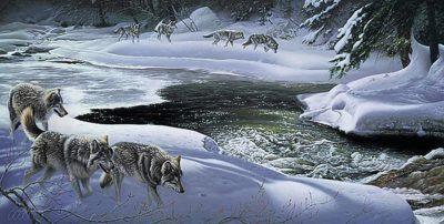 Wolf Creek - Jay Johnson