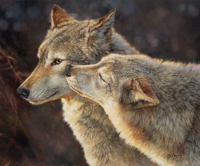 Wolf Kiss Bonnie Marris