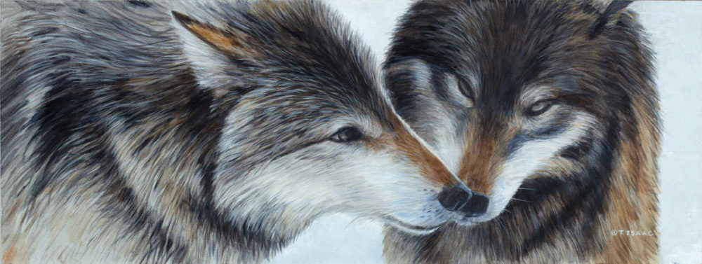 Wolf Love Terry Isaac