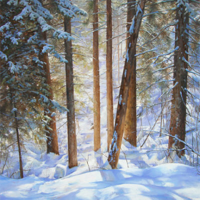 Woodland Series No. 1 - Winter Ravine - Art by Artist Charity Dakin