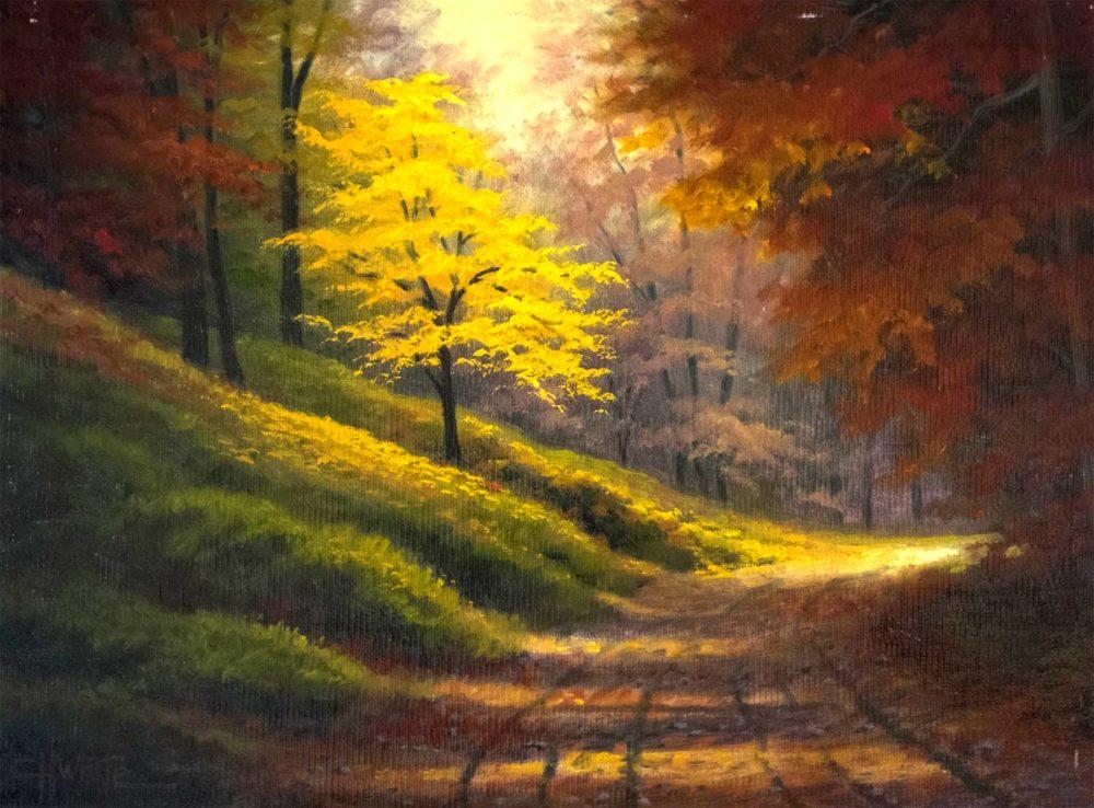 Woodland Walk - Charles White