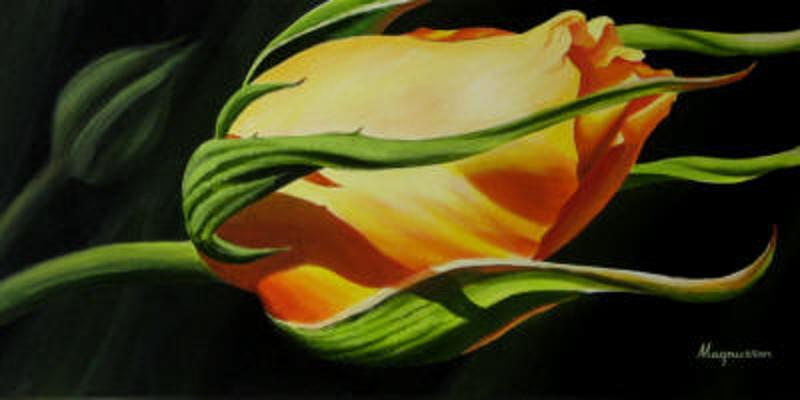 Yellow Rose Bud Dennis Magnusson