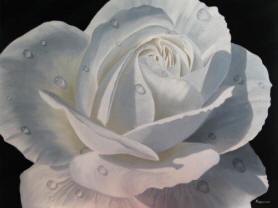 pt-specials-flower